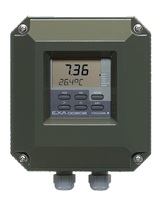 EXA DO202 2-Wire Dissolved Oxygen Analyzer